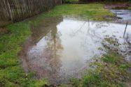 drainage-verstopft