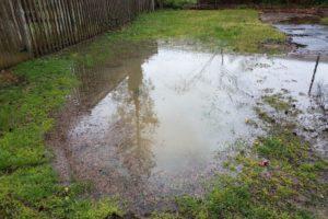 Verstopfte Drainage: Ursachen und Problembehandlungen