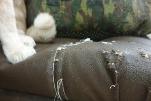 Sitzmöbel polstern – wie auch die Ecken ordentlich aussehen