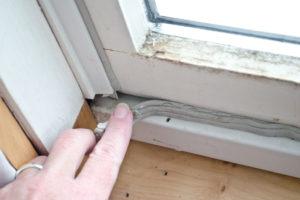 Fensterdichtungen entfernen – so geht's!