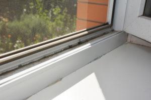 Fensterdichtungen reinigen – wichtig für die Dämmung Ihrer Fenster