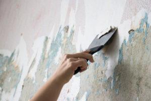 Silikatfarbe auf Tapete – dieser Anstrich kann nicht halten