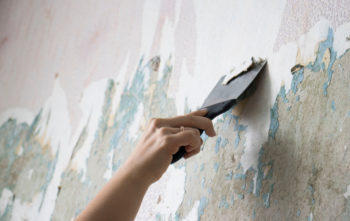 Relativ Silikatfarbe auf Tapete auftragen - Warum geht das nicht? ZW15