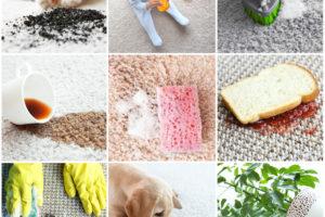 So reinigen Sie Ihren Teppich mit Hausmitteln effektiv