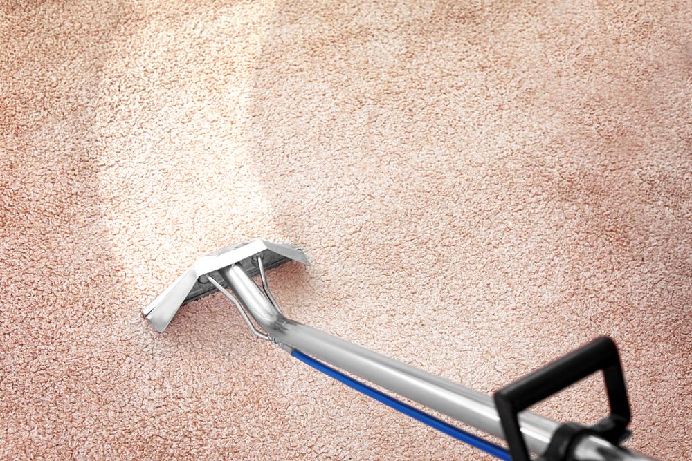 teppichboden-reinigen