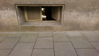 Extrem Keller lüften im Sommer - Wann und wie ist das sinnvoll? PK15