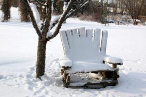 Der Holzwurm mag keinen Frost und lässt sich damit vertreiben