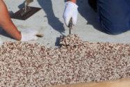steinteppich-selber-machen