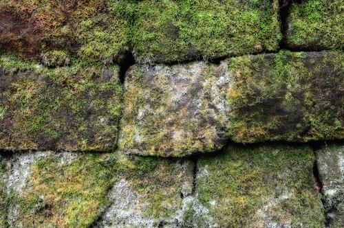 bruchsteinmauer-trockenlegen