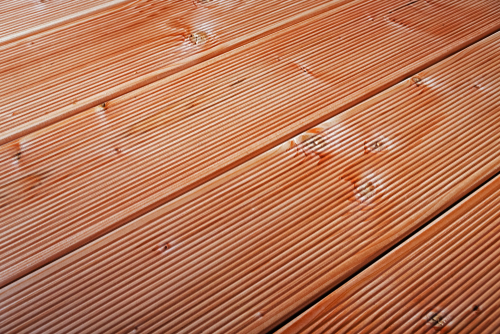 douglasienholz-haltbarkeit