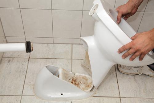 toilette-entsorgen