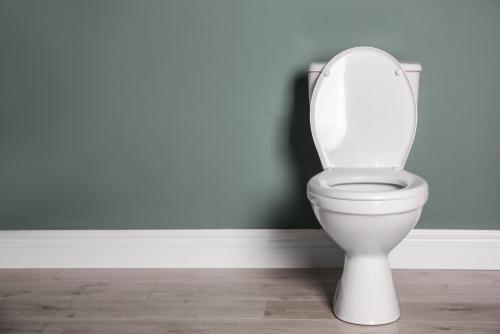 toilette-masse