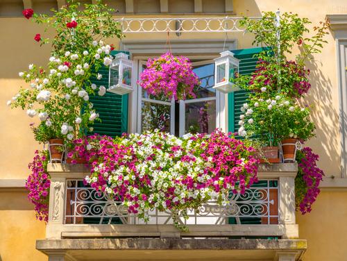 balkonarten