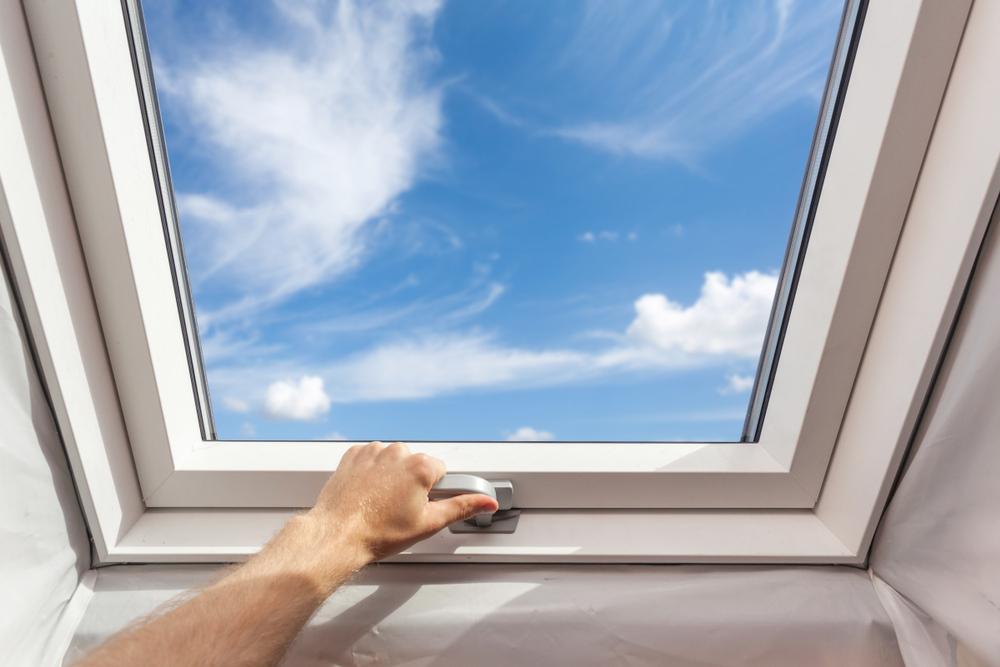dachfenster-arten