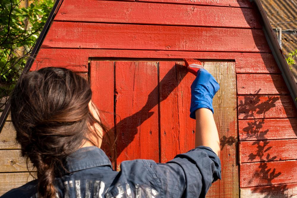 24 Wandfarbe Auf Putz Streichen